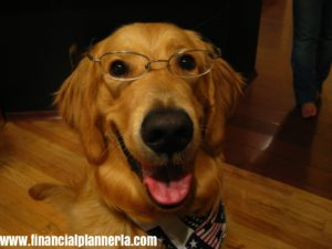 Golden Retriever Independent Financial Planner